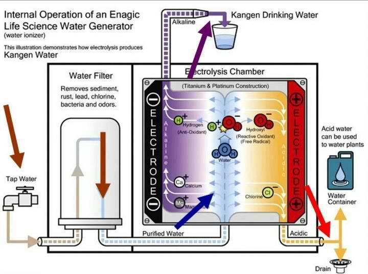 kangen water store alkaline water